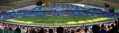 Aussie Stadium w Sydney